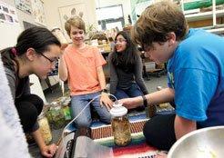 group of students working on science projec- Oak Meadow School, Littleton, MAt